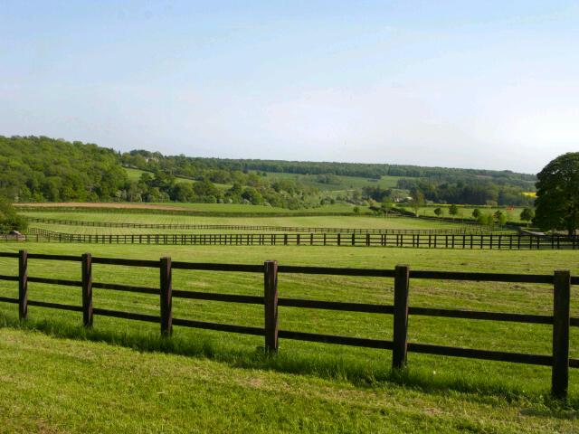 Yanworth - Horse Country!
