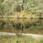 SCOTLAND-Glen-Orchy